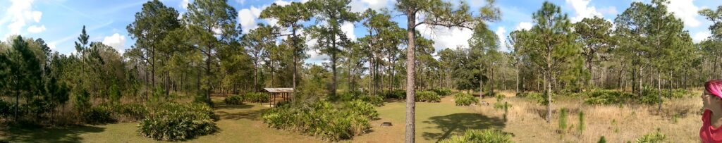 Cypress Creek Preserve
